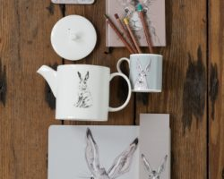 Handsome Hares and Cheeky Chickens by Caroline Walker